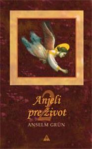 Obrázok z Anjeli pre život 2